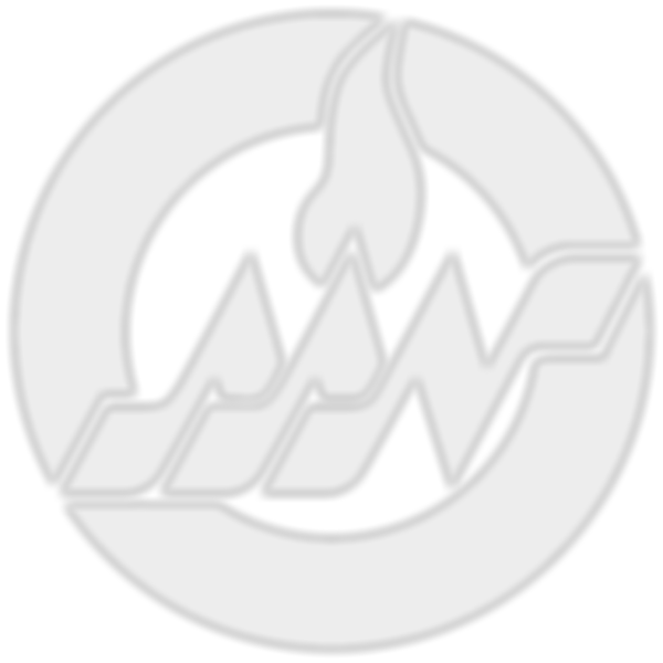AAN_Icon.png