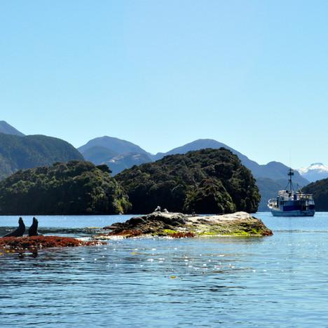 Anchor Island