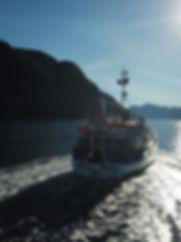 Outer Dusky Sound.JPG