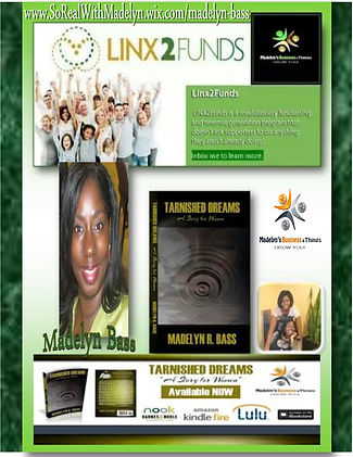 Ad Posters for Linx2Funds 2015.jpg