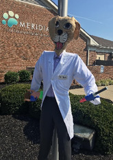 Dr. Howl