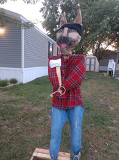 Lumberjack Shepherd