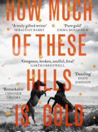 How Much of These Hills is Gold - C Pam Zhang