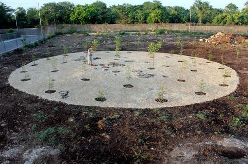 Campo Magnetico, 2007-2011
