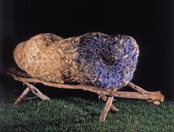 Yuya azul, 2003-4