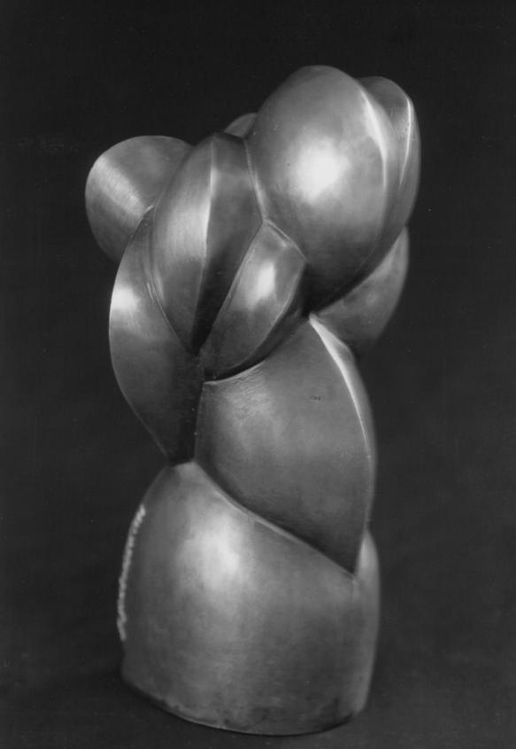 Semilla I, 1996