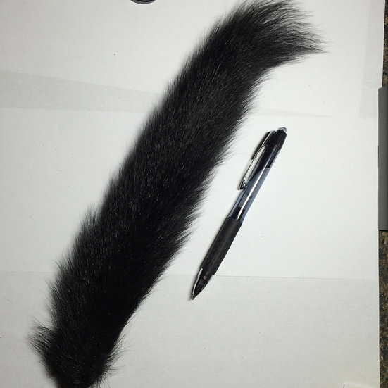 Fox Squirrel Dyed Black
