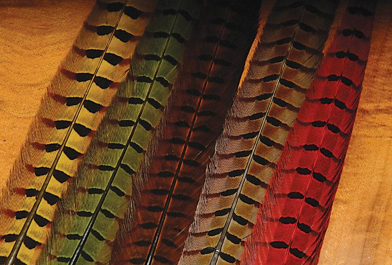 Ringneck Pheasant Tail Dyed Pr.