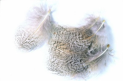Partridge Grey Neck Hackles