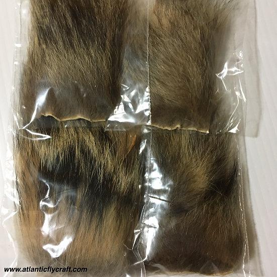 Coyote Body Hair