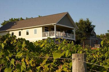 garvin-vineyard-2-800x533.jpg
