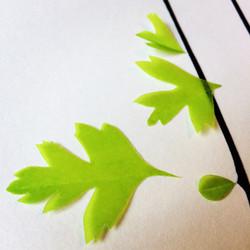 Tree (leaves)