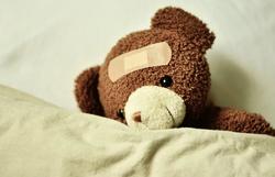 teddy-3183563_960_720