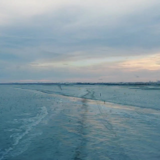 Long Beach, NY Drones and Birds.MOV