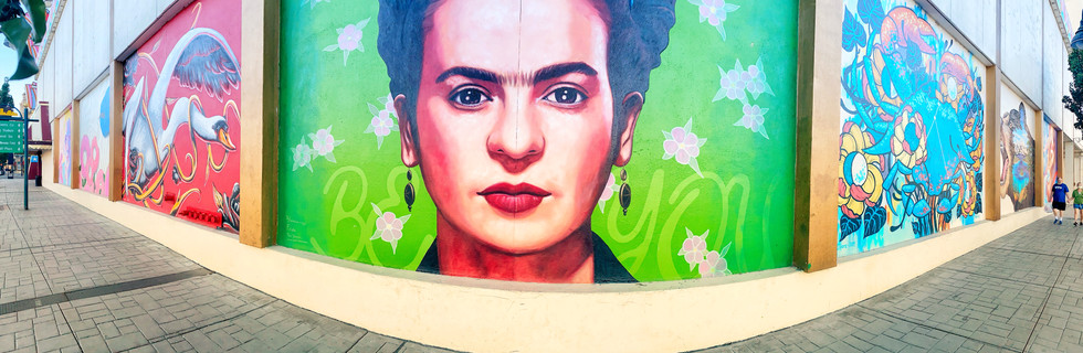 Seen on Downtown Reno and Burning Man Art and Mural Tours