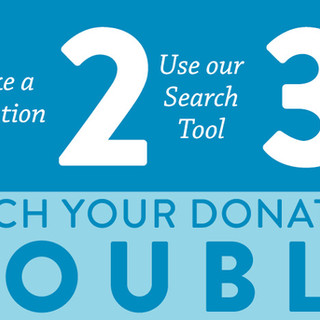 Double Your Impact Website Header