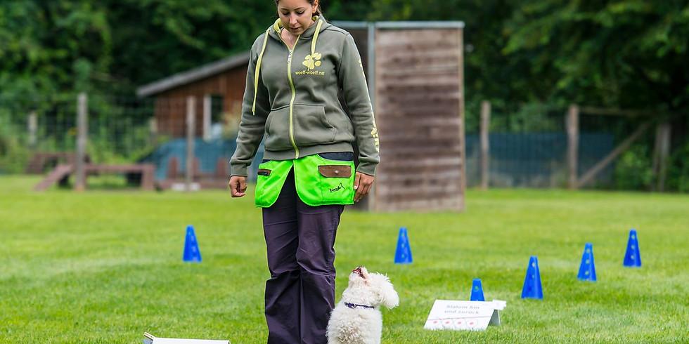 ÖRV A-Trainerschulung Rally Obedience Teil 1