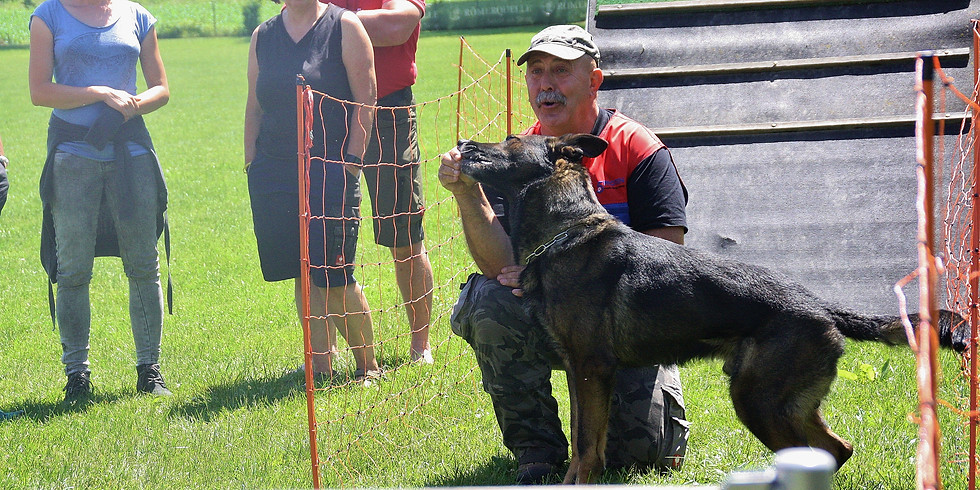 ÖRV A-Trainerschulung UO Teil 1 mit Hund