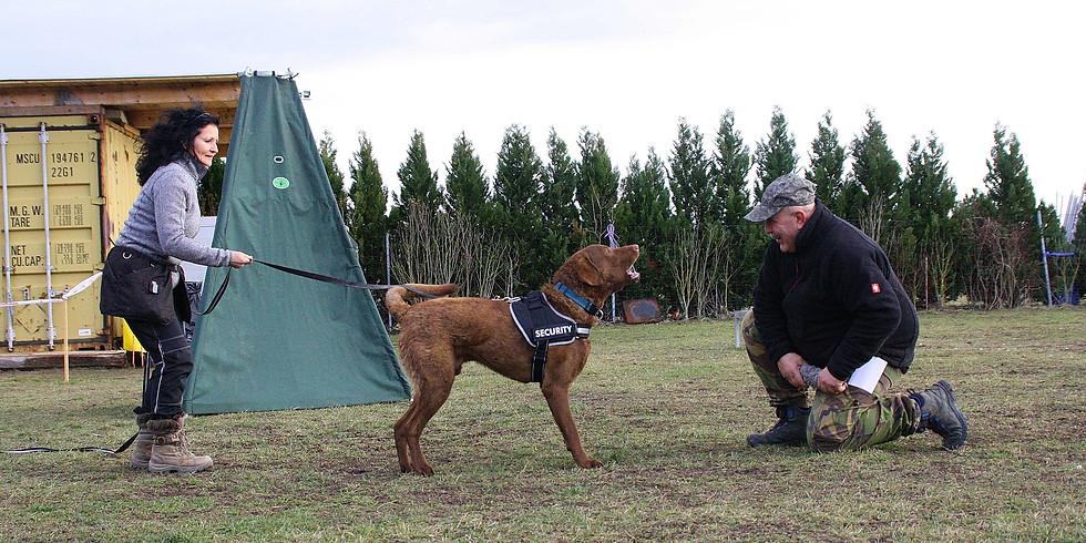 ÖRV A-Helferschulung Teil 1 (für Schutz- und Rettungshunde)