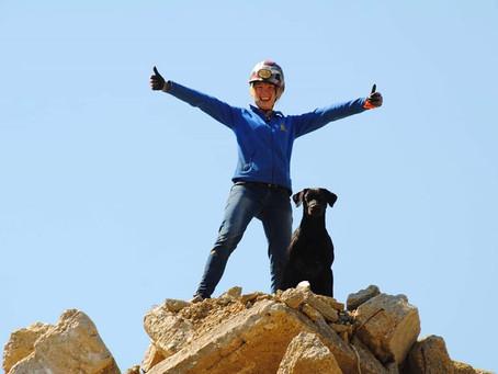 Verschiebung Rettungshundekurse: neue Termine und Ausschreibungen online