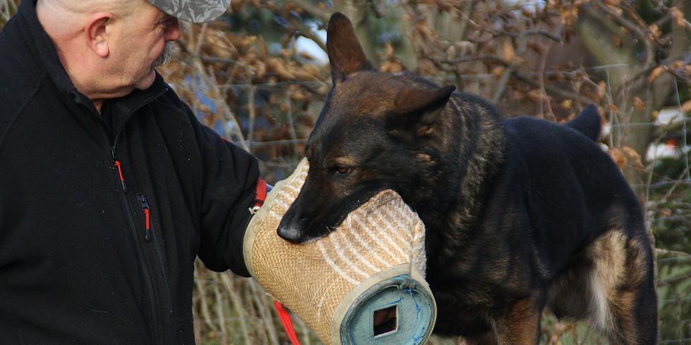 ÖRV A - Helferschulung Teil 2 für Schutzhunde