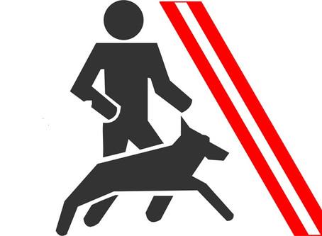 Dogmaster aktualisiert!