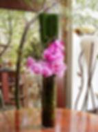 Phalaenopsis orchids arrangement by enflowerment