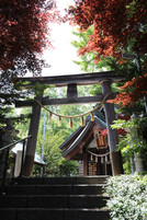 JAPANESE traditional spot