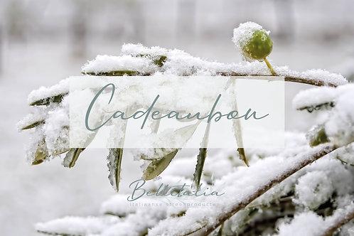 Cadeaubon Kerst v.a.