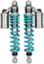 Nitron NTR R3 Twin Shocks