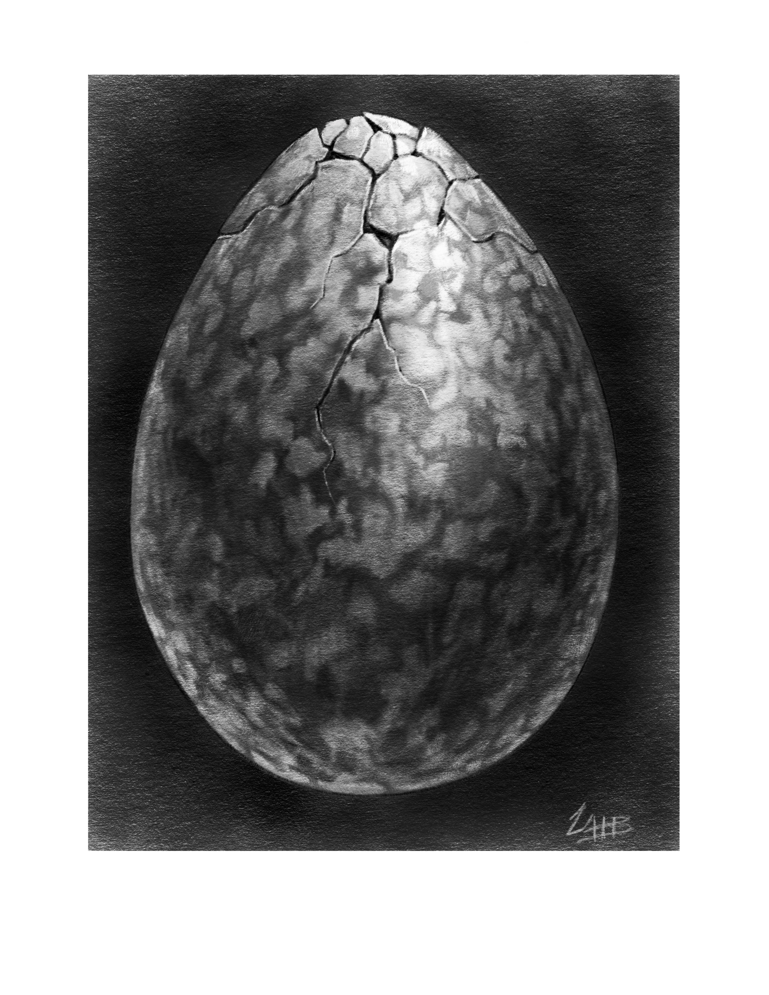 White Raven Egg