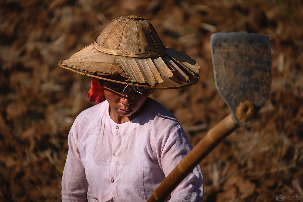 Farmer in the area of Shan state, Myanmar
