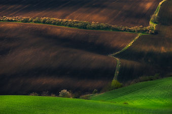 Rolling hills in Southern Moravia