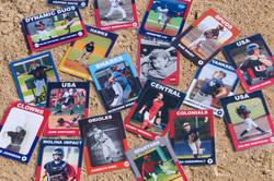 Baseball Cards as Education