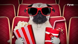 LES FILMS CULTES DE SPORT : LE TOP 5 BY FYVE 🎬
