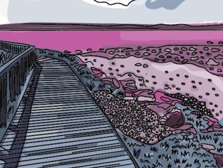 Behind the print: Pink Bay, Porthcawl