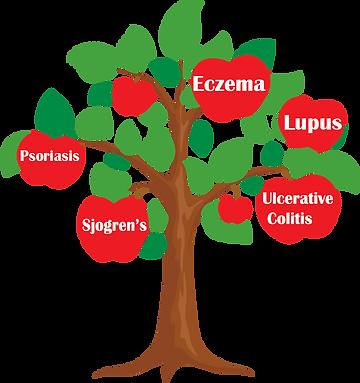 psoriasis, sjoren's, eczema, lupus, ulcerative colitis,crohn's