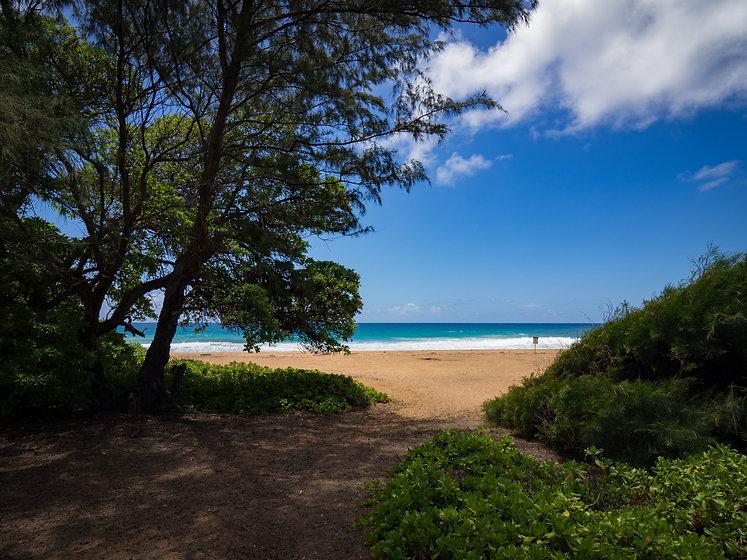 Kealia Beach, Kapaa, Kauai, Hawaii, USA.