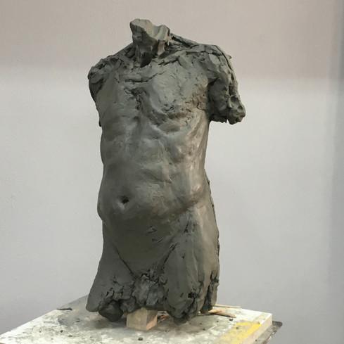 male torso study