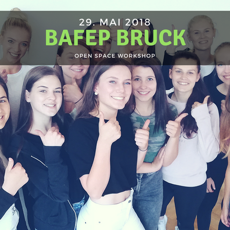 WORKSHOP - BAFEP Bruck