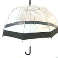 Clear dome Umbrella - Blue