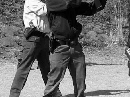 Bodyguard training and life history