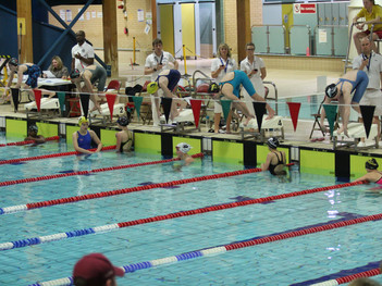 Strong Show for Dolphin at County Champs