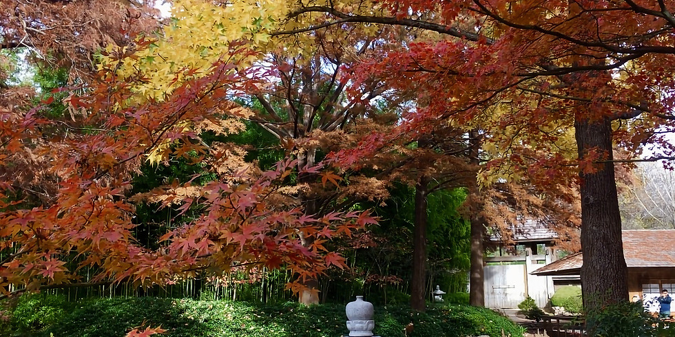 Oct. 12-18 Fall Sesshin