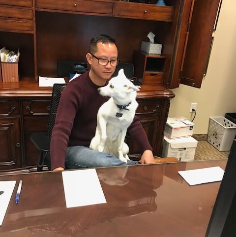 Canine Clerkship Program at BJC