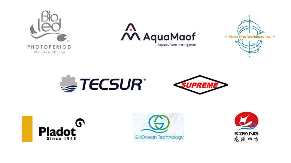 companies-1024x576.jpg