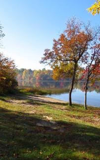 Commons Cedar Grove Trailer Park Fall Co