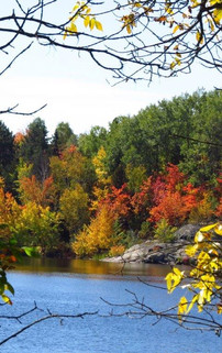 Fall Lake view of Mc Charles Lake.jpg