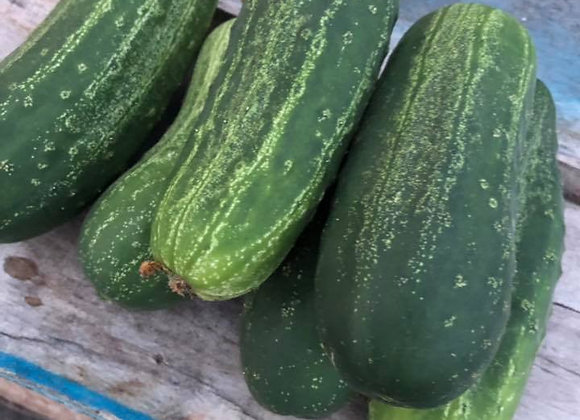Cucumbers (6/quart)