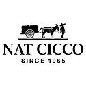 Nat Cicco Logo.png